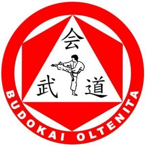 Budokai Oltenita